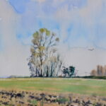 "'Essex Elms and Buzzard' watercolour 9""x7"" Lockdown art March 2020"