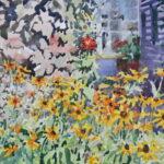'Rudbeckia and purple vine, September sun'